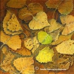 cottonwood leaves — pastel