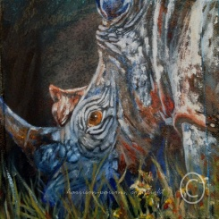Just Grazin Rhino — oil